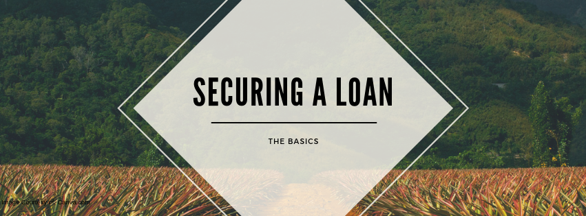 Securing a Loan: The Basics