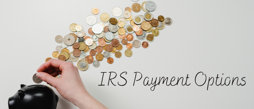 IRS Payment Options
